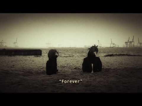 Steven Wilson Harmony Korine HD
