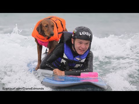 From Service dog to SURFice dog!
