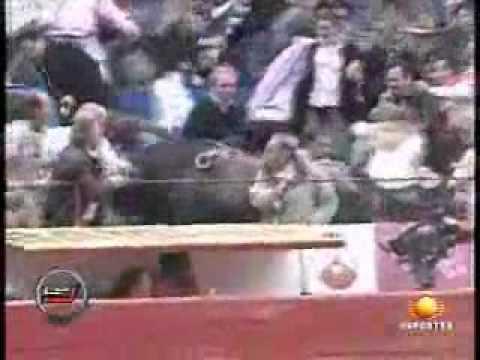 Armando Palomaz-Corrido del Pajarito el Toro Volador