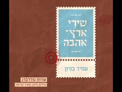 עמיר בניון שדות גולדברג Amir Benayoun