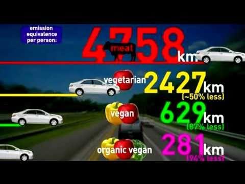 Effetto serra: costi della carne e risparmio vegan