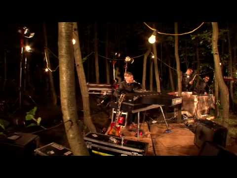 Miike Snow - Animal (Live, In the Woods)