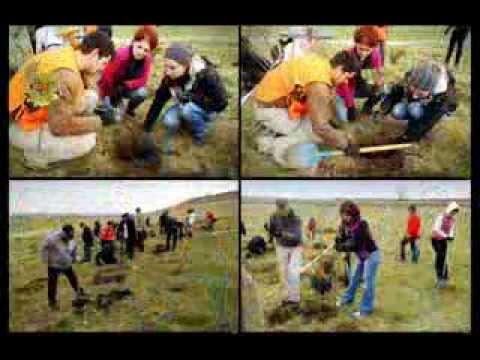 Plantare de toamna pentru Padurea Copiilor - I / noiembrie 2013, 2013