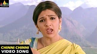 Chinni Chinni Ashalunna Video Song - Andala Ramudu