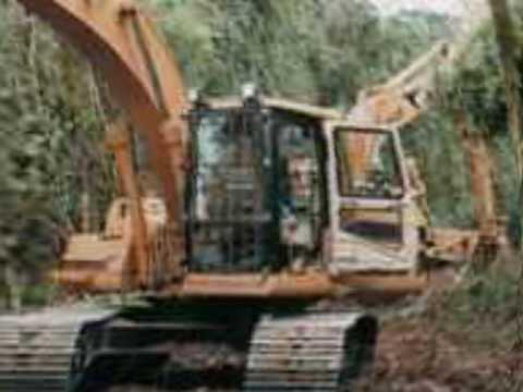 deforestacion argentina
