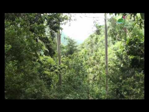 Santana Reserva Mundial da Biosfera da UNESCO