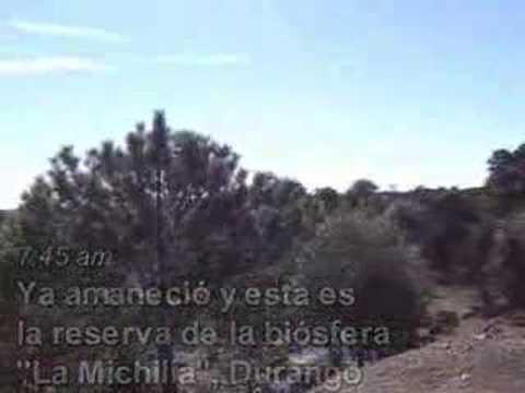 Lobosmexicanos: Reserva de la biosfera la Michilia Durango