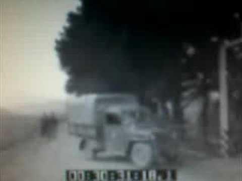 Volterra: arriva l'Ente Maremma (1953-INCOM-Ist.Luce)