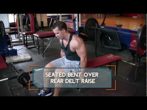 Seated Bent-Over Rear Delt Raise - How to do Seated Rear Delt Raises
