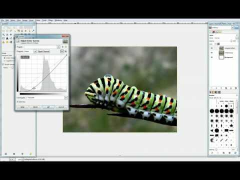 Gimp Videotutorial ITA - Lezione 1
