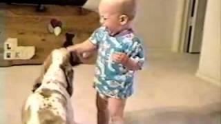 犬と赤ちゃんのアメフト勝負。くしゃくしゃになったボールを奪い合う。