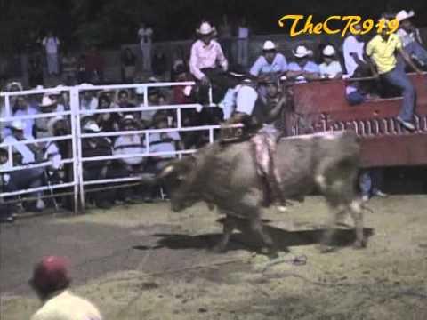 Buena Monta:Cano de Morelia vs El Turbo