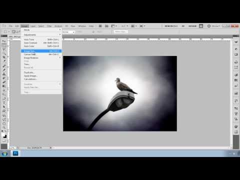 Photo Shop cs5 Tutorial-Resize your image