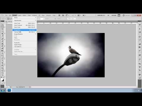 Photo Shop cs5 Tutorial-Resize your image