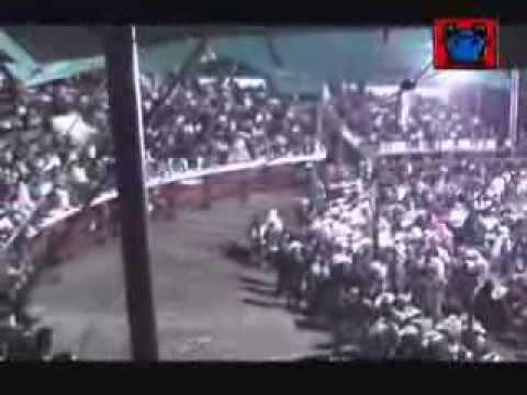 JARIPEO - MONTA DE TOROS  cortesia de JUIGALPACHONTALESVIDEOYMAS