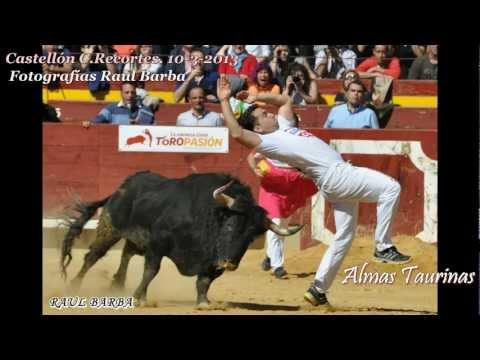concurso recortes Castellón 2013 con imagenes de Raul Barba