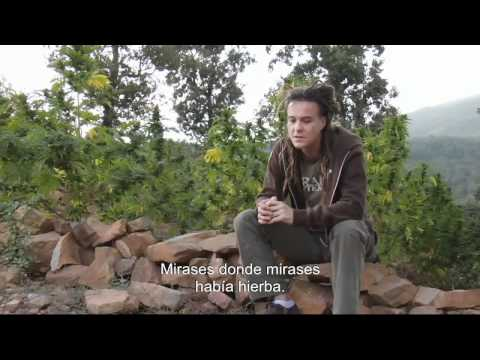 Strain Hunters Morocco Spanish Subtitles