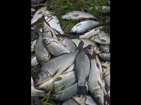 оренбург рыбалка в казахстане