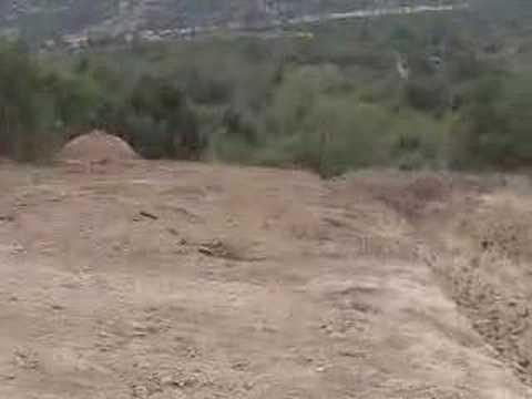 Tala ilegal de bosque nativo en Chile 2/4