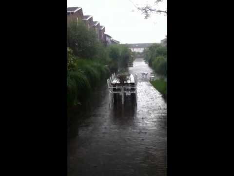 Zomer in Leidsche Rijn