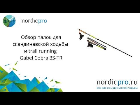 Gabel Cobra Re-Volution 3S-TR / Палки для скандинавской ходьбы