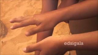 two-kids-one-sandbox-original-video