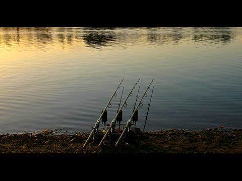 Linear Fisheries - The Number One Day Ticket Carp Water