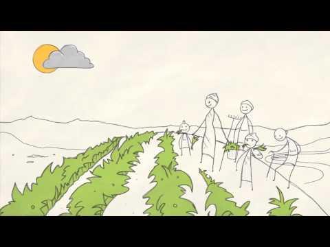 La Historia de Agricultura y la Economía Verde