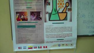 ¿Cómo elaborar un póster científico? ICQA, ESPOL