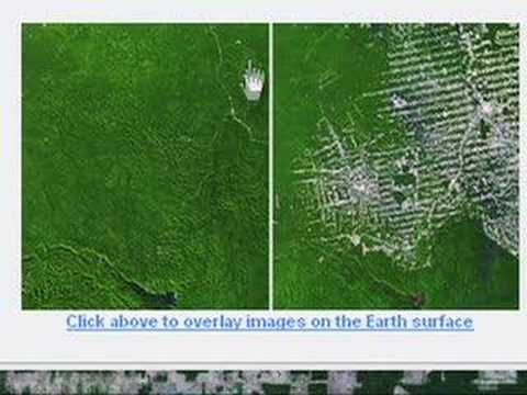 UNEP - Amazon Deforestation in Google Earth