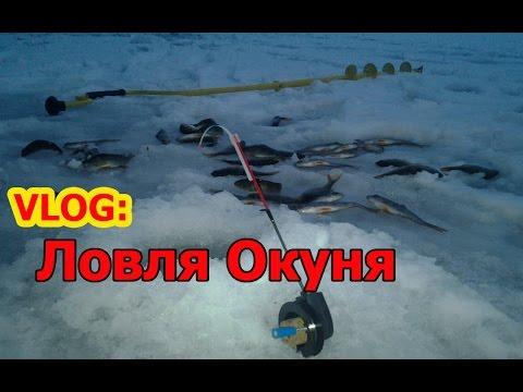 влог рыбалка
