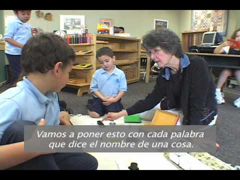 Español Vol. 2: Hammer Montessori
