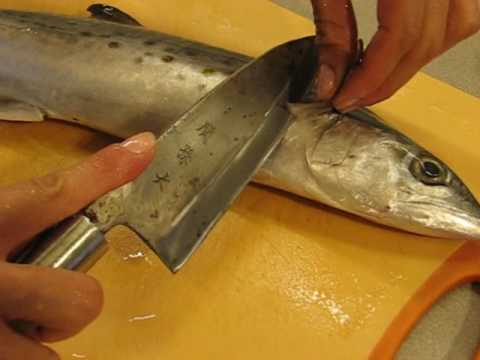 Misa's Japanese cooking : How to filet a fish (Spanish Mackerel) ~ NY1page.com