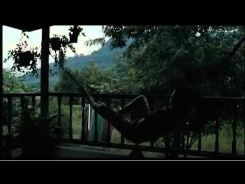"""De """"A serbian film"""" a """"Uncle Boonmee"""": lo que 2010 nos deparó"""