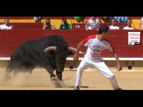 """El """"Jose Tomas"""" de los quiebros, un numero uno, toros en hd salva mari"""