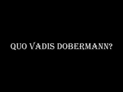 Quo Vadis Dobermann? poster