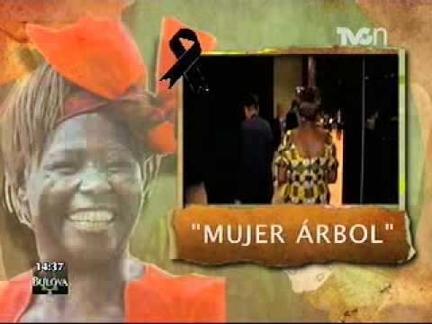 Defensores de la tierra - Wangari Maathai
