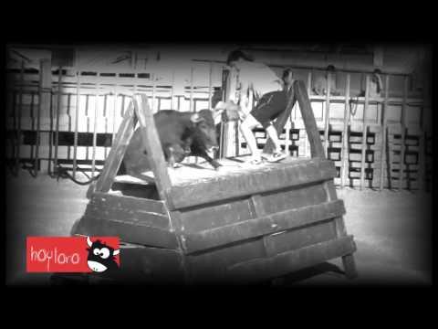 TOROS VIDEO CLIP ISAAC ALVAREZ