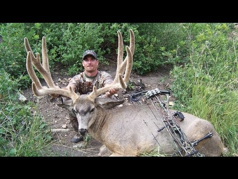 World Record Archery Mule Deer - Chad Kulow - MossBack