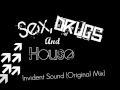 Sex, Drugs And House (Original Mix) - Invident Sound