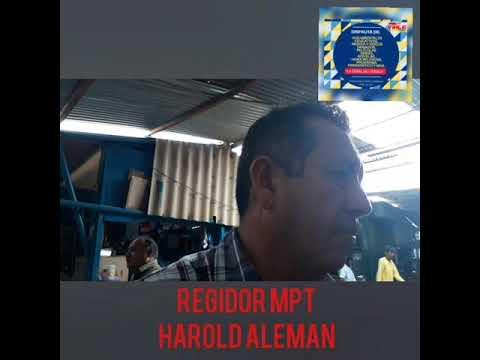 REGIDOR HAROLD ALEMAN .. MPT...