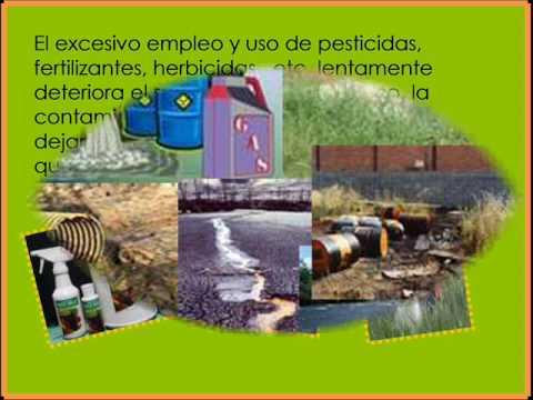 contaminacion del suelo [proyecto de español]