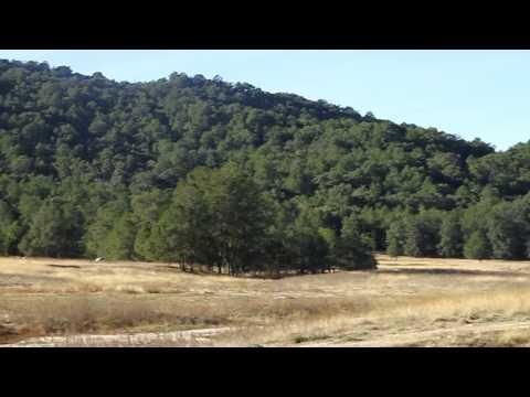 Sierra La Laguna 2011 (AndGast)