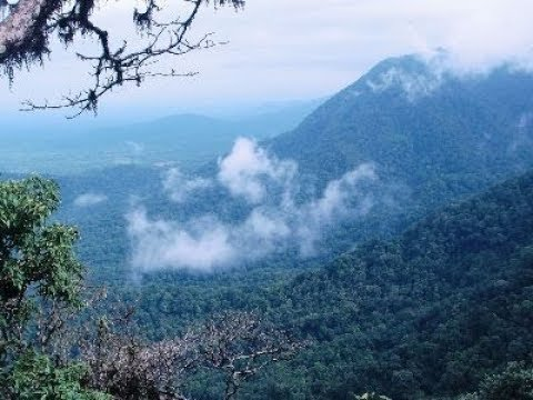 शिमोगा : कर्नाटकचे काश्मीर