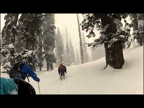 Powder Skiing Gulmarg Kashmir