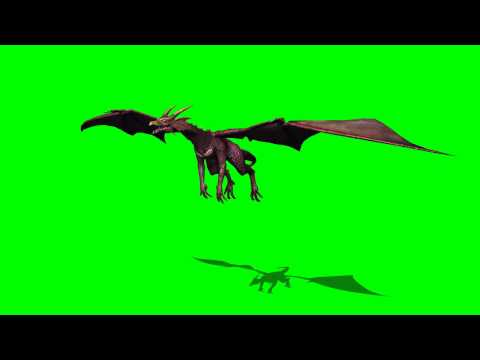 Dragon in fly - greenscreen effects