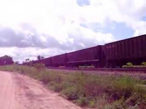 CARGUEIRO 51 - TRANSPORTE DE SOJA