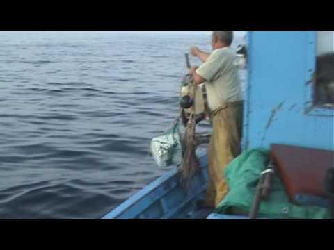 Le cronache del mare - I pescatori, il porto e la barca