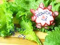 ✅Редиска цветы🌸Карвинг из овощей и фруктов🍀Карвинг из редиски👍Кухонные заморочки🌺