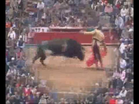Juli Indulta Trojano Mexico